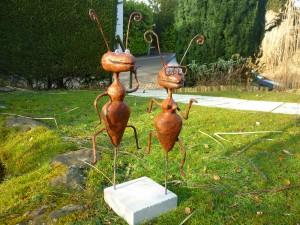 Couple fourmis 95€