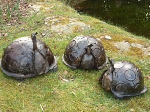 La tortue 75€/30cm,60€/25cm,50€/20cm